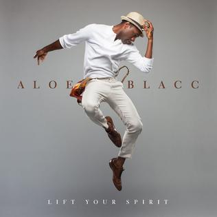 Aloe Blacc « Can You Do This »