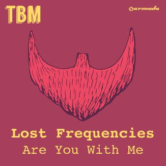 Lost Frequencies « Are You With Me »