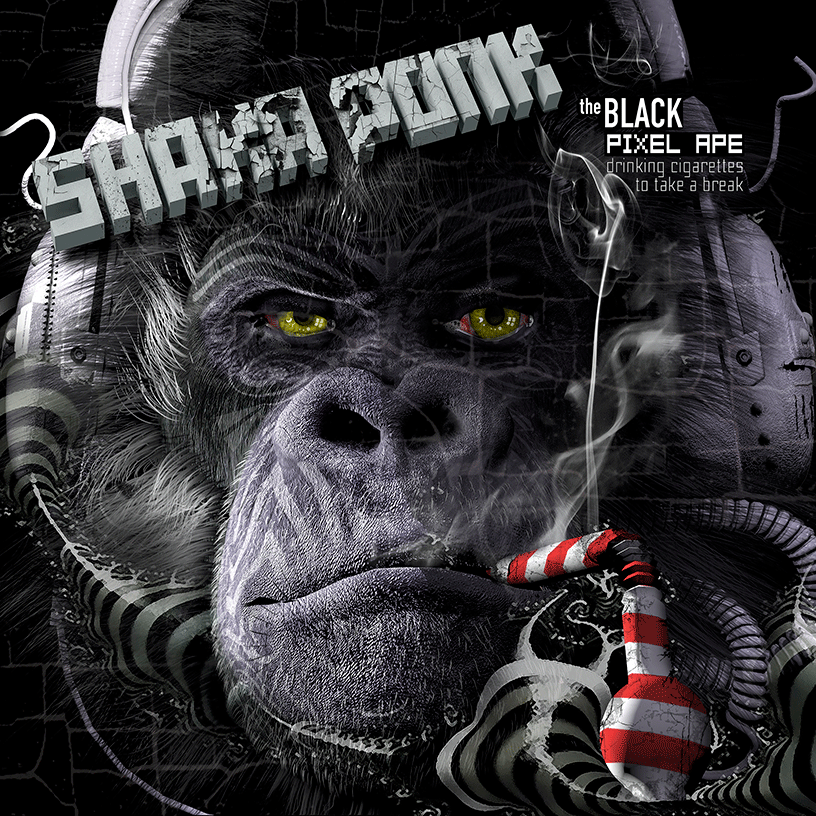 Shaka Ponk « Time Has Come »