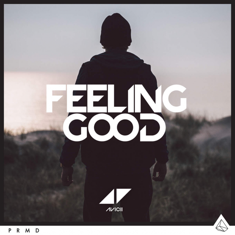 Avicii « Feeling Good »
