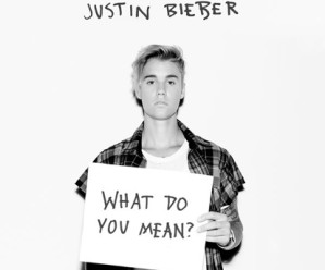 Justin Bieber « What Do You Mean? »