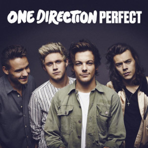 One-Direction-Home