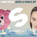Sam Feldt « Been A While »