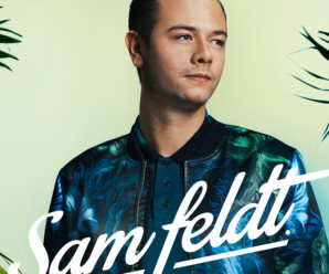 Sam Feldt « Hungry Eyes » ft Meleka