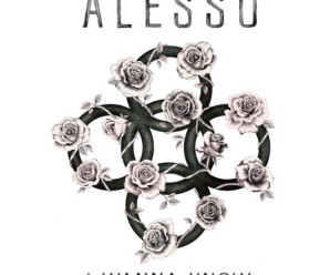 Alesso ft. Nico & Vinz – I Wanna Know