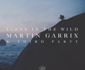 Martin Garrix & Third Party – Lions In The Wild