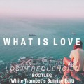Lost Frequencies – What Is Love