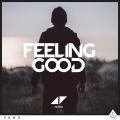 Avicii «Feeling Good»