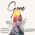 Afrojack ft. Ty Dolla $ign – Gone